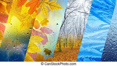 tiempo, otoño, invierno, concepto, pronóstico