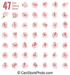 tien, set, flower., 47, eps, sakura, kers, pictogram