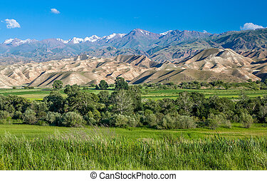 Tien Shan mountains and valley, Kyrgyzstan