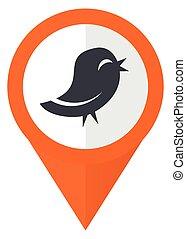 tien, twitter, eps, vrijstaand, achtergrond., vector, sinaasappel, witte , wijzer, pictogram