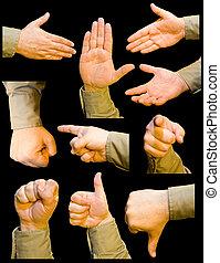 tien, verzameling, handen