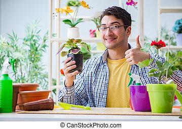 tienda, flor, trabajando, joven, florista, hombre