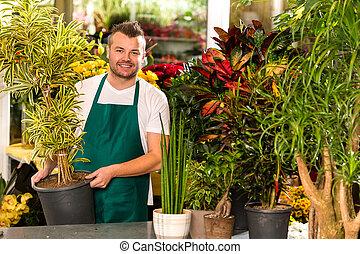tienda, planta, flor, trabajando, ayudante, potted, macho