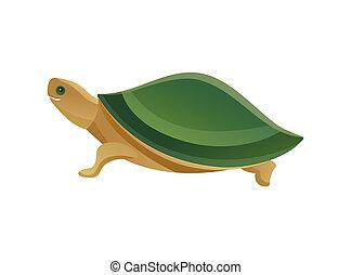 tienda, tortuga, mascota, ilustración, vector, animal