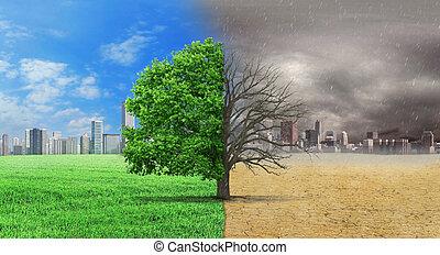 tiene, clima, concepto, changed