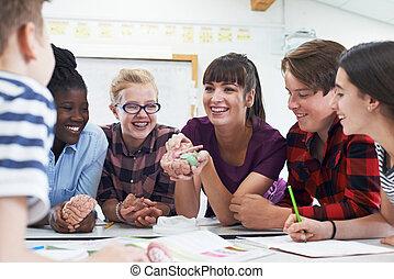 tiener, scholieren, met, leraar, in, biologie klas