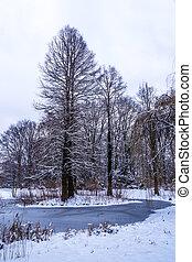 tiergarten, in, winter