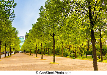 Tiergarten view with rows of trees in Berlin