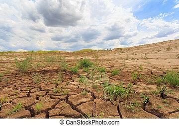 tierra, grieta, superficie, árido, área