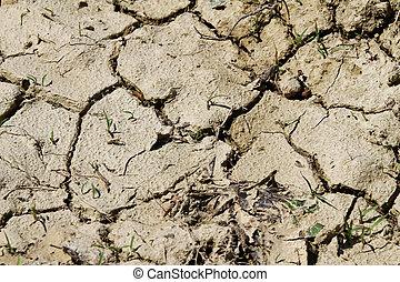 tierra, sin, agua, durante, el, sequía, en el país