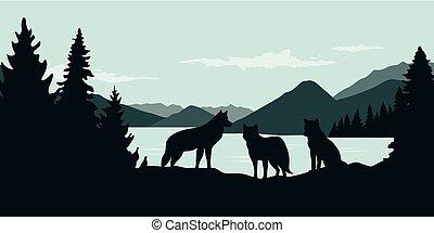 tierwelt, natur, wolf, wald, grüner fluß, landschaftsbild, satz