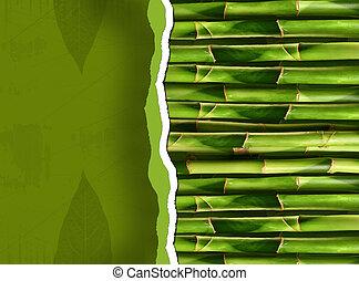 tige, bambou, copie, dense, espace