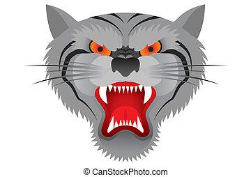 tiger, čelit