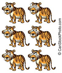 tiger, διαφορετικός , εκφράσεις , του προσώπου
