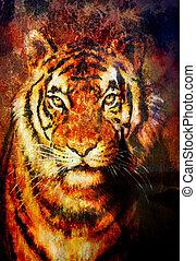tiger, コラージュ, 上に, 色, 抽象的, 背景, さび, 構造, 野生生物, 動物, コンピュータ,...