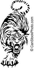 tiger, ベンガル