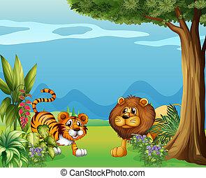 tiger, ライオン, 丘