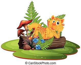 tiger, 木, 丸太
