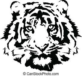 tiger, 頭