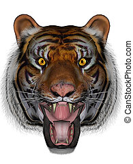 Tiger - 3D rendered tiger on white background isolated