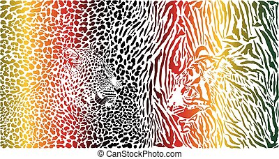 Tiger and Leopard and color pattern background