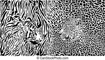 Tiger and Leopard and pattern background