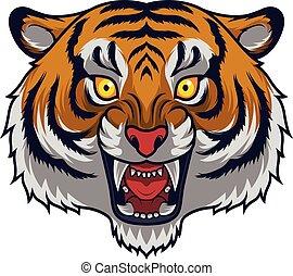tiger, arrabbiato, testa, mascotte