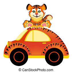 tiger, autó, karikatúra