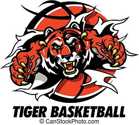 tiger basketball - tiger mascot ripping through basketball...