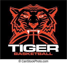 tiger basketball