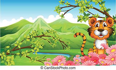 tiger, bergen, bloemen, door
