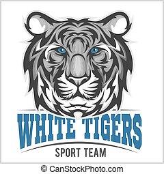 tiger, biały, głowa, wektor, ilustracja