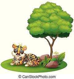tiger, boompje, dons, leggen, achtergrond, onder, witte , spotprent