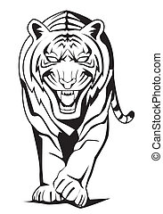 tiger, chód