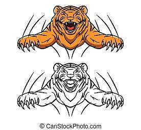 tiger, coloritura, carattere, libro