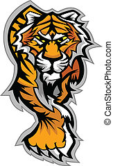 tiger, corporal, gráfico, vetorial, mascote