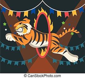 tiger, cyrk