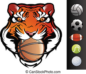 Tiger Face - Tiger Sports Mascot with Ball in Mouth