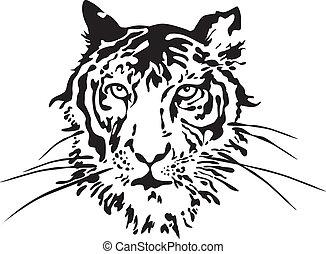tiger, face., vektor