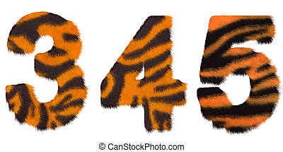 Tiger fell 3 4 and 5 figures isolated over white