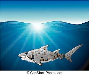 tiger, fim, tubarão, cima, mar