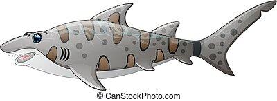 tiger, fim, tubarão, cima