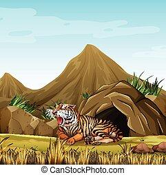 tiger, frente, caverna, selvagem