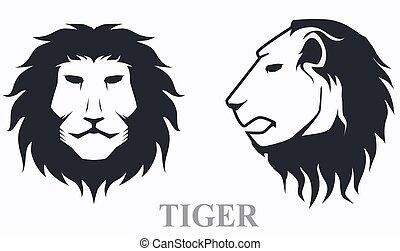 tiger, frente, vista lateral principal