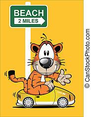 tiger, furcsa, karikatúra, vezetés, autó