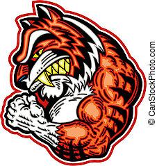 tiger, gespierd, mascotte