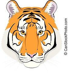 Tiger head in cartoon style. Vector illustration