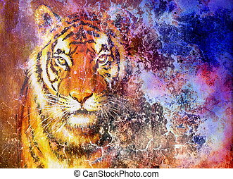 tiger head  in space with stars, computer collage.