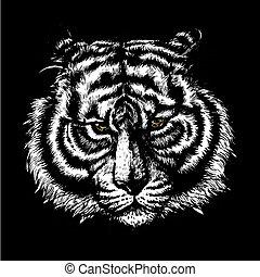 tiger head isolated illustration on black background