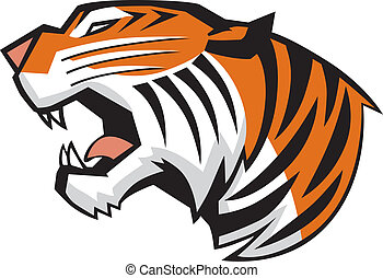 Vector cartoon clip art illiustration of a roaring tiger head in a side view, rendered in a graphic style